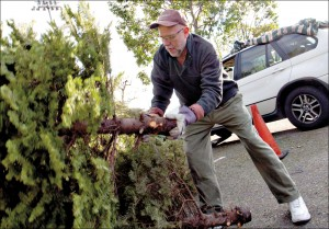 Jo Alyea drops off his used Christmas tree at the tree recycling spot at Clover Park last year. (File photo)