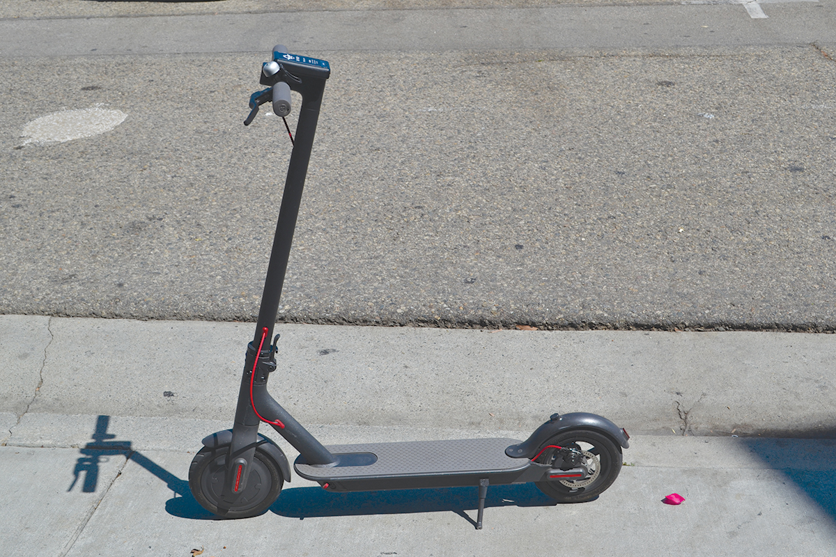 bird scooters flying around town santa monica daily press. Black Bedroom Furniture Sets. Home Design Ideas