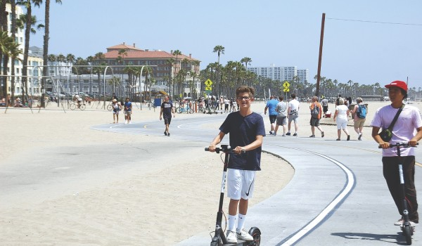 Birds and Limes scoot through loophole to ride on the beach